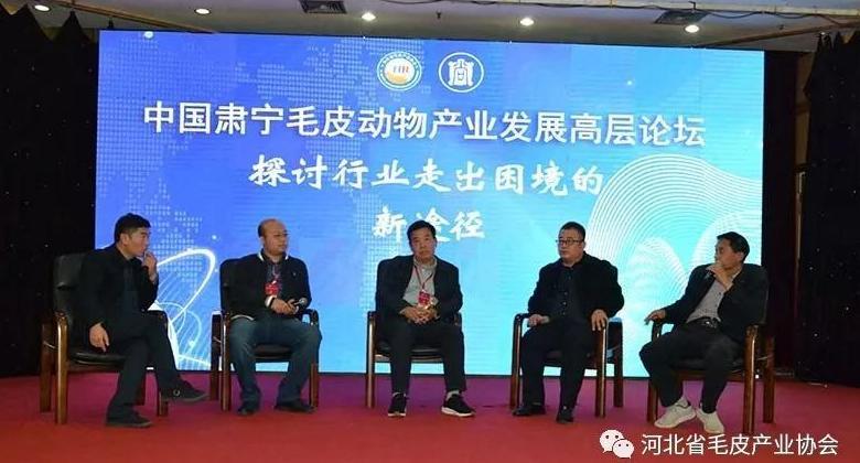 聚力发展 逆势前行:中国肃宁万博手机版产业高层发展论坛嘉宾访谈(三)